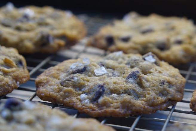 Salty Chocolate Chunk Cookies.jpg